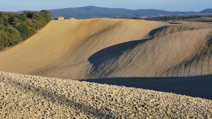 Lands of Siena