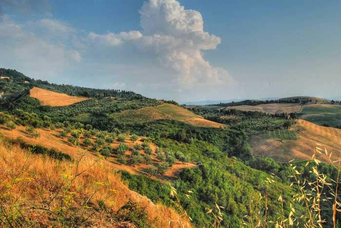 Volterra Landscape, Tuscany