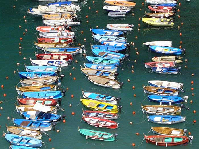 Bright Boats in Vernazza Harbor
